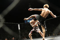 L'interdiction du Mixed Martial Arts (MMA)  est-elle légale?